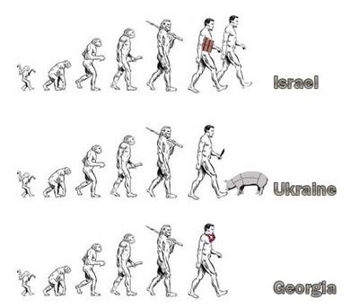 funny-evolution-jokes-05